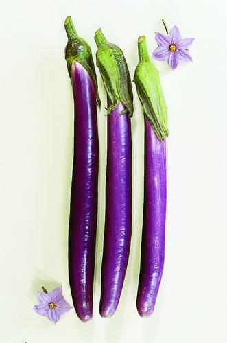 Long, thin, dark purple eggplant